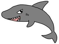 「幻のサメ」の歯の化石