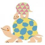 ヘサキリクガメが孵化