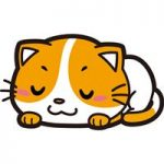 かわいすぎる!オススメの癒やされる猫動画6選【2017年5月】